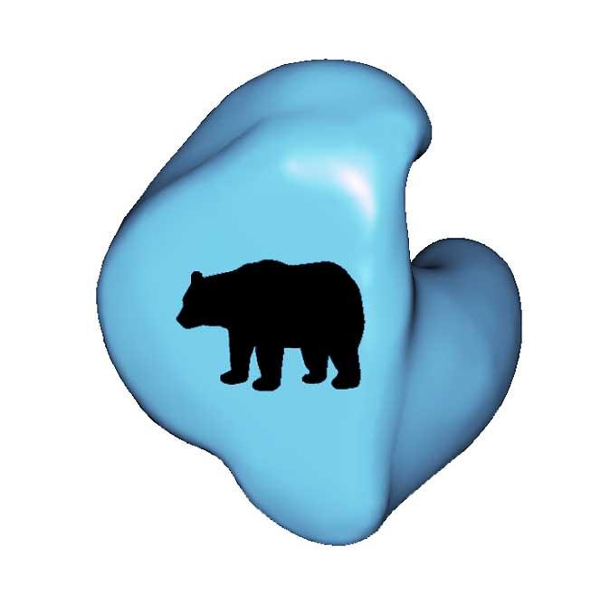 A1-BEAR