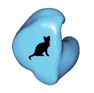 A1-CAT