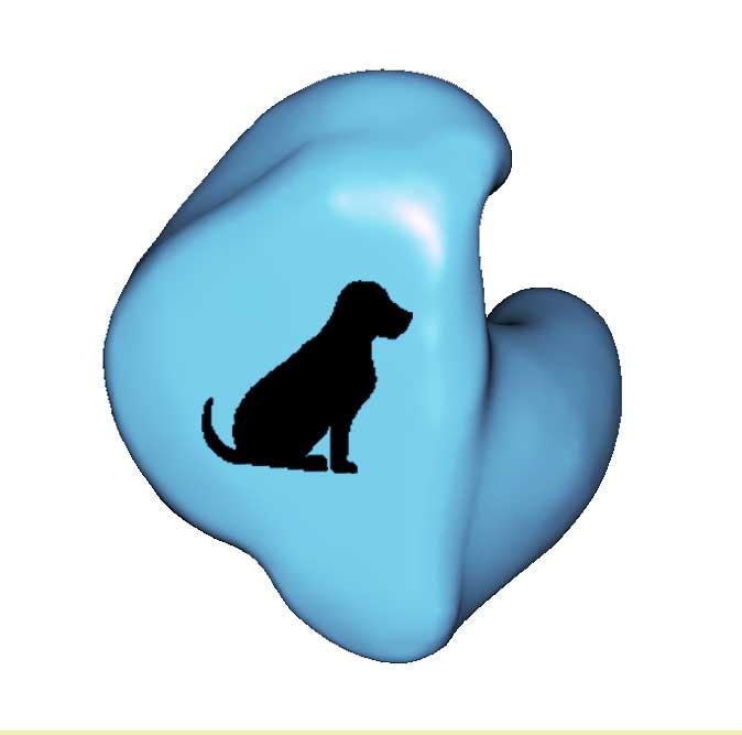 A1-DOG SITTING