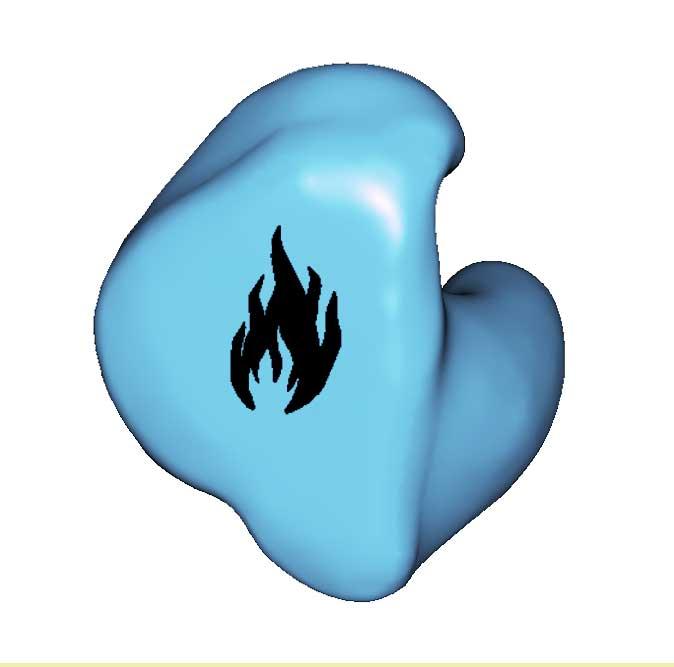 FS4-FLAME