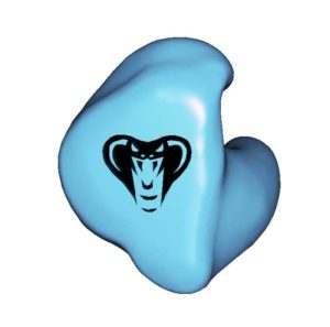 A1. Cobra Head